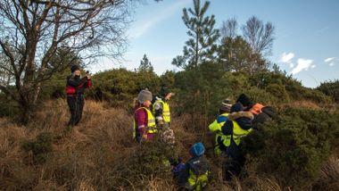 Jakten på det grønne, glitrende juletre. Barnehagen skal finne det perfekte treet.
