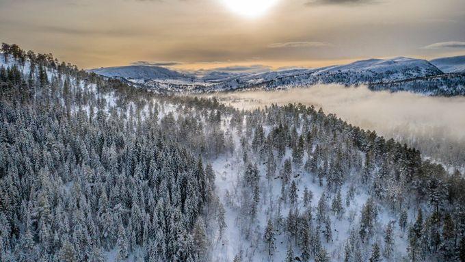 Statskog har solgt norske fjell og skoger for 434 millioner. Her er kjøperlisten de ikke vil at du skal se.
